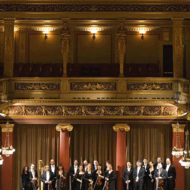 Vienna Concert-Verein-Orchestra
